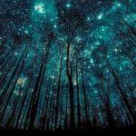 Когда и к чему снится звездное небо?