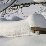 К чему снится много снега: толкование популярных сонников