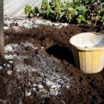 Для чего нужна гашеная известь в саду